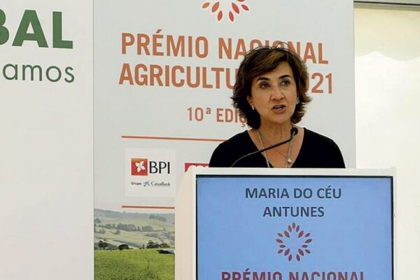 A grande resiliência do setor agrícola